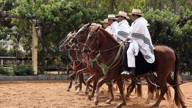 Celebrating Peru's Bicentennial Independence Day