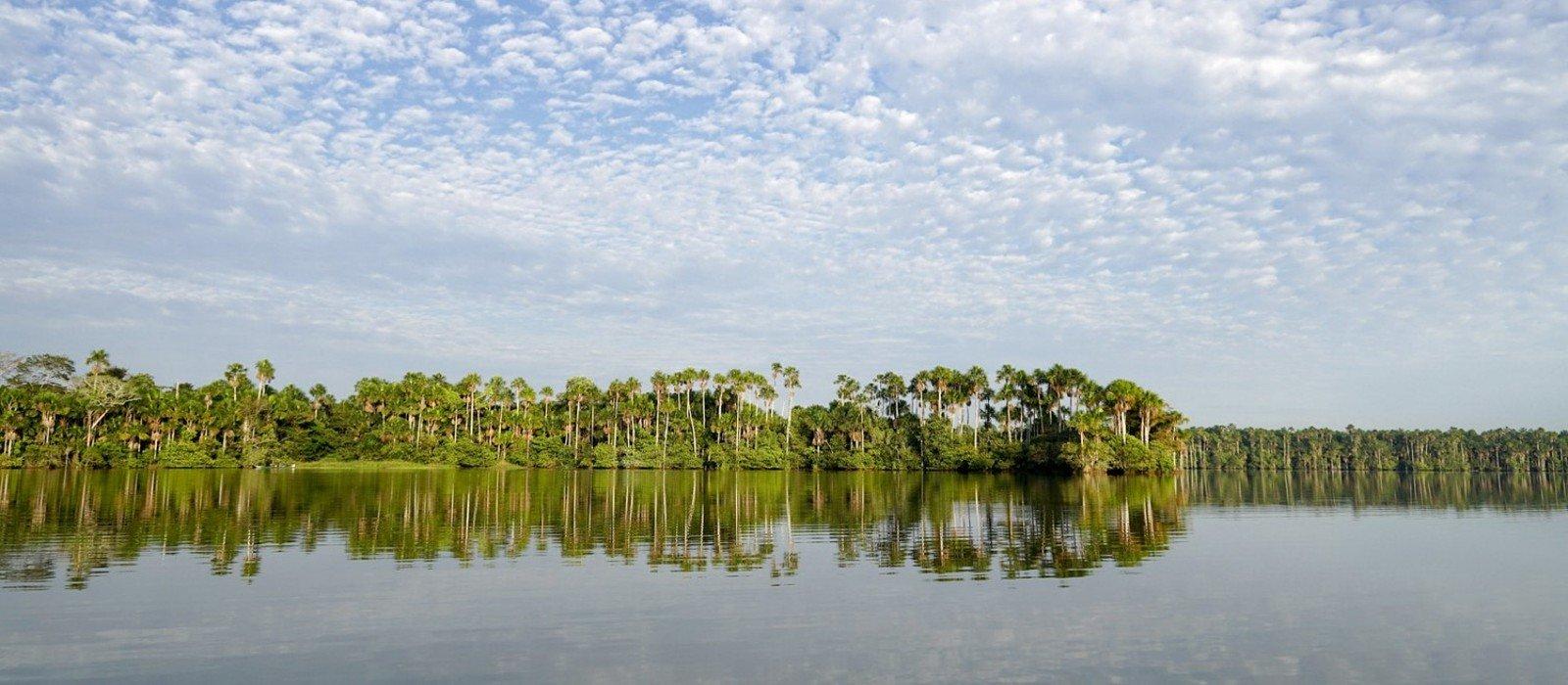 Corto Maltes Amazonia Lodge