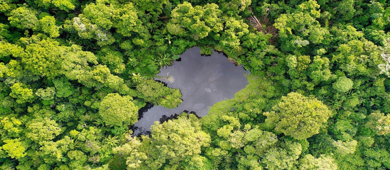 Eco Amazonia Lodge – 4D